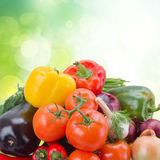 Pile  of fresh ripe vegetables Stock Images