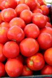 Pile of Fresh Ripe Tomatoes Stock Photos