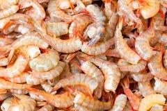 Pile Of Fresh Shrimp. Fresh Shrimp Ready To Be Sold Royalty Free Stock Images