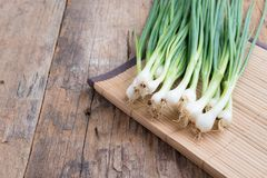 Pile of fresh spring onion on wood table Stock Images