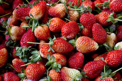 Pile Fresh strawberry Royalty Free Stock Images