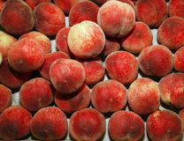 Pile of fresh summer peaches Stock Image