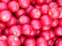 Pile of fresh tomatoes. Stock Images