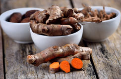 Pile of fresh turmeric roots Stock Images