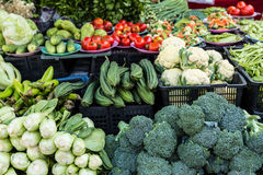Pile of fresh vegetables for sale. In local market Royalty Free Stock Photos