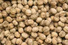 Pile of fresh walnuts Royalty Free Stock Photos