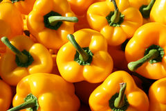 Pile of Fresh Yellow Bell Peppers at Farmer's Market Stock Photography