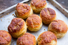 Pile of freshly baked scones Stock Image