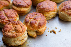 Pile of freshly baked scones Royalty Free Stock Images