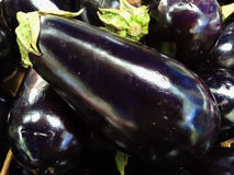 Pile of freshly picked eggplants at the farmers Market Stock Image