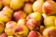 A pile of freshly picked peach royalty free stock photography