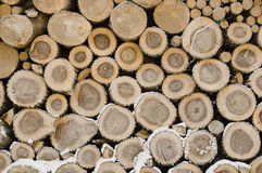 Pile of frozen logs Royalty Free Stock Photography