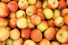 Pile of Fuji apples for sale at the market Stock Image