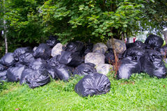 Pile of garbage in the forest. Multiple black plastic bags with garbage in the forest Royalty Free Stock Images