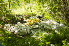 Pile of garbage piled in wild woods Royalty Free Stock Images