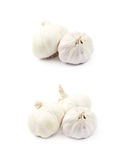 Pile of garlic bulbs isolated Stock Images