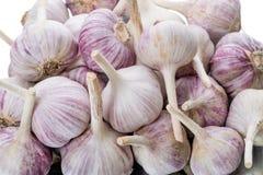 Pile garlic head Royalty Free Stock Photo