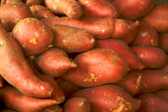 Pile of garnet yams Stock Images