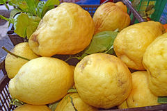 Pile of giant lemons in Capri, Italy. Pile of giant lemons in a Capri market, Italy Stock Photos