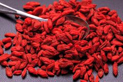 Large pile of goji berries. Stock Images