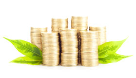 Pile of gold coins with green leaves Stock Photos