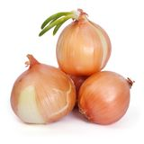 A pile of golden onions with green sprouts isolated Royalty Free Stock Image