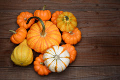 Pile of Gourds and Pumpkins Royalty Free Stock Photography