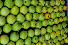 Pile of green apples from a market Royalty Free Stock Photography