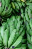 A pile of green bananas Stock Photos