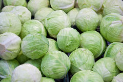 Pile of Green Cabbages Stock Photo