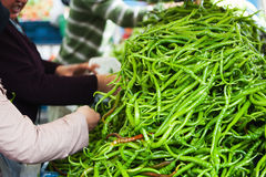 Pile of green chilis Royalty Free Stock Images