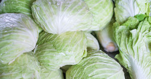 Pile of green chinese cabbages Stock Photos