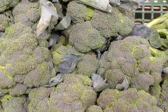 Pile of Green Fresh Broccoli on display for sale stock photo