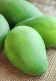Pile green fresh mango Stock Image