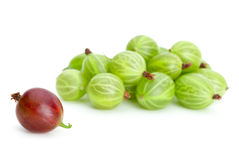 Pile of green gooseberries and one red alone. Isolated on the white background Stock Images