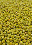 Pile of green gram seeds Royalty Free Stock Photography