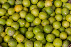 Pile of green lemon as a background Royalty Free Stock Photo