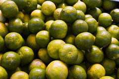 Pile of green Limes Stock Image