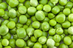 Pile of green peas. Of different sizes Stock Photos