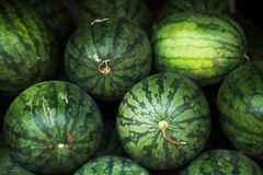 Pile of green striped watermelons background Royalty Free Stock Image
