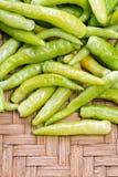 Pile of green thai goat pepper Stock Images