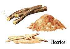 Pile of ground licorice and licorice root set. Watercolor hand drawn illustration isolated on white background. Pile of ground licorice and licorice root set vector illustration