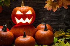 Pile of halloween pumpkins on leaves Royalty Free Stock Photo