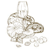 Pile of hand drawn mozzarella cheese with chiabatta. Glass of wine and basil leaves. Vector hand drawn illustration Stock Photography