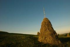 Pile of hay Stock Photo