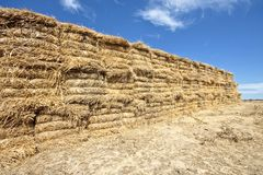 Pile of hay bales Royalty Free Stock Photos