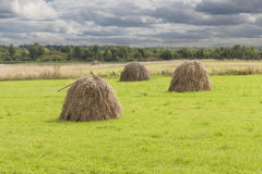 The pile of hay in the meadow Royalty Free Stock Photos