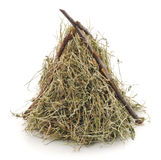 Pile hay. Royalty Free Stock Images