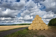 Pile of haystacks. Pile of cylinder haystacks over which birds fly. Masuria, Poland Royalty Free Stock Photos