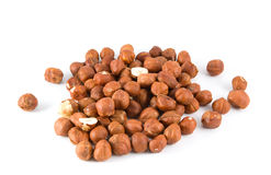 Pile of hazelnuts Royalty Free Stock Photo